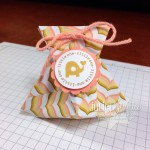 Origami Treat Pouch & Video!