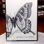 Swallowtail Sympathy Card