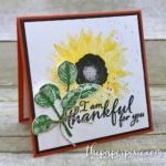 Sneak Peek – Painted Harvest Bundle