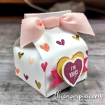 Mini Milk Carton Valentine with Video Tutorial