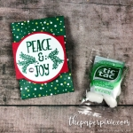 Mini Tic Tac Envelope with Video Tutorial